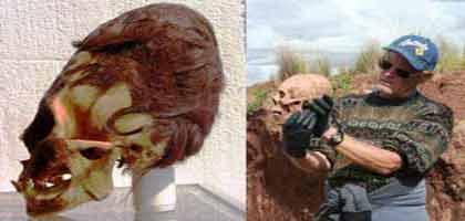 Idegenek ősi koponyái