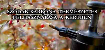 SZÓDABIKARBÓNA TERMÉSZETES FELHASZNÁLÁSA A KERTBEN.