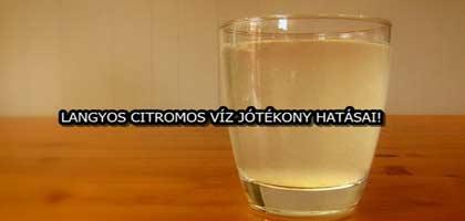 LANGYOS CITROMOS VÍZ JÓTÉKONY HATÁSAI!