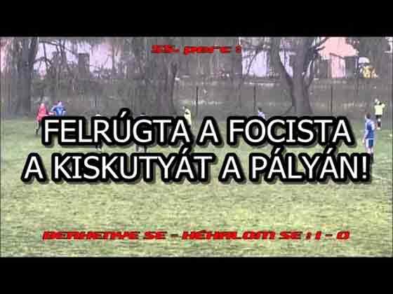 FELRÚGTA A FOCISTA A KISKUTYÁT A PÁLYÁN!