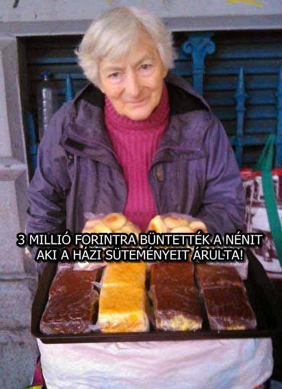 3 MILLIÓ FORINTRA BÜNTETTÉK A NÉNIT, AKI A HÁZI SÜTEMÉNYEIT ÁRULTA!