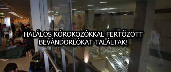 HALÁLOS KÓROKOZÓKKAL FERTŐZÖTT BEVÁNDORLÓKAT TALÁLTAK!