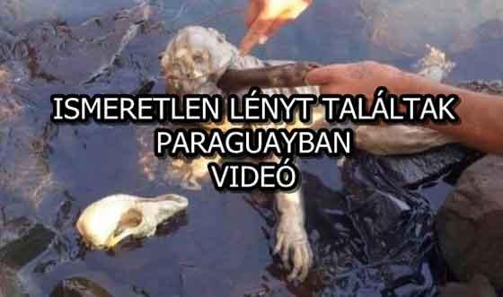 ISMERETLEN LÉNYT TALÁLTAK PARAGUAYBAN
