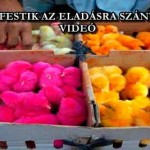 SZÍNESRE FESTIK AZ ELADÁSRA SZÁNT CSIBÉKET - VIDEÓ
