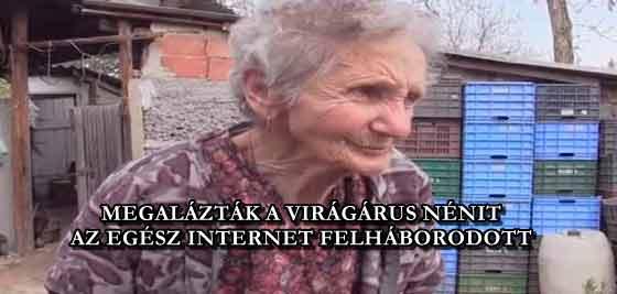 MEGALÁZTÁK A VIRÁGÁRUS NÉNIT, AZ EGÉSZ INTERNET FELHÁBORODOTT