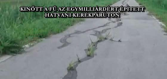 KINŐTT A FŰ AZ EGYMILLIÁRDÉRT ÉPÍTETT HATVANI KERÉKPÁRÚTON
