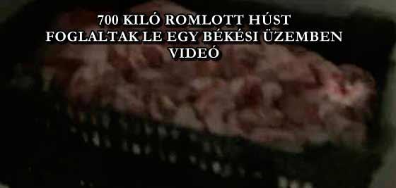 700 KILÓ ROMLOTT HÚST FOGLALTAK LE EGY BÉKÉSI ÜZEMBEN