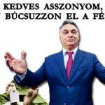 KEDVES ASSZONYOM, LASSAN BÚCSUZZON EL A FÉRJÉTŐL!