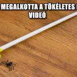 EGY APUKA MEGALKOTTA A TÖKÉLETES PÓKFOGÓT - VIDEÓ