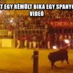 MEGÖLTE MAGÁT EGY RÉMÜLT BIKA EGY SPANYOL FESZTIVÁLON - VIDEÓ