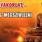 JÓ GYAKORLAT - ÉRDEMES MEGSZÍVLELNI.