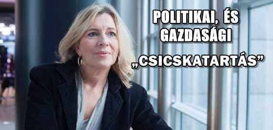 """MAGYARORSZÁGON POLITIKAI, ÉS GAZDASÁGI """"CSICSKATARTÁS"""" FOLYIK?"""