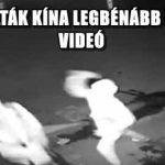 MEGTALÁLTÁK KÍNA LEGBÉNÁBB BETÖRŐIT - VIDEÓ