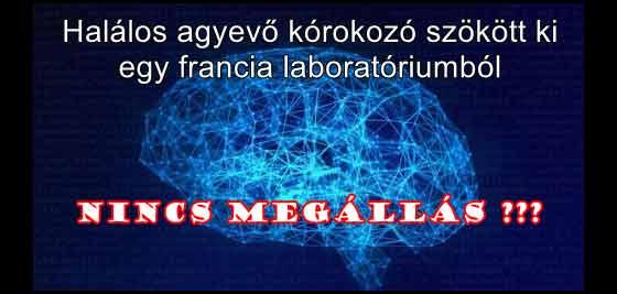 Netextra, Nincs megállás??? Halálos agyevő kórokozó szökött ki egy francia laboratóriumból